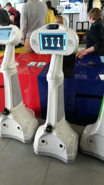 Skolkovo Robotics 2015 - webot