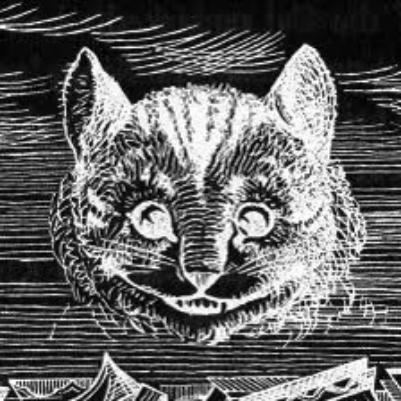 Инвертированный Чеширский кот
