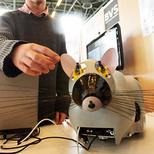 Робот-крыса из Франции