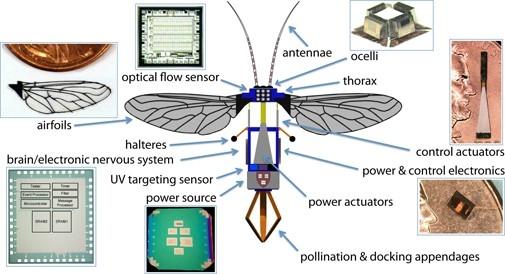 робот-пчела