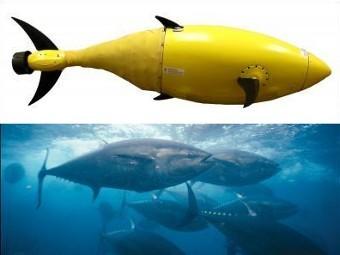 Робо-тунец