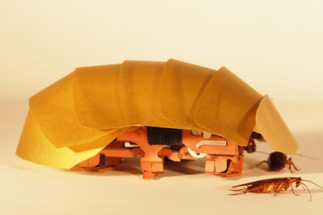 CRAM - деформируемый робот-таракан
