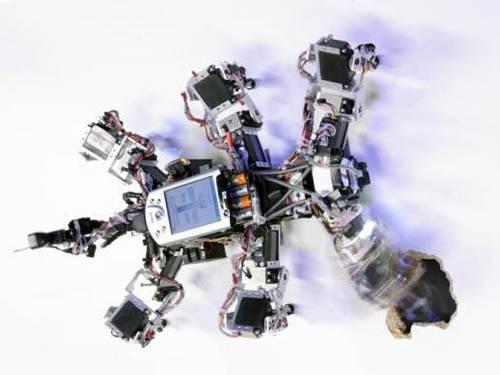 Походка робота регулируется ритмами и хаосом