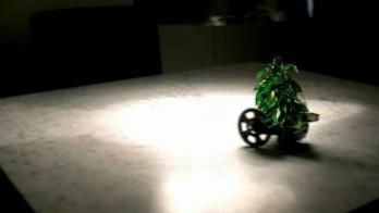 Экзоскелет для растений